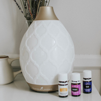 essential oil diffuser desert mist from young living