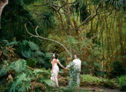Oahu Destination Wedding