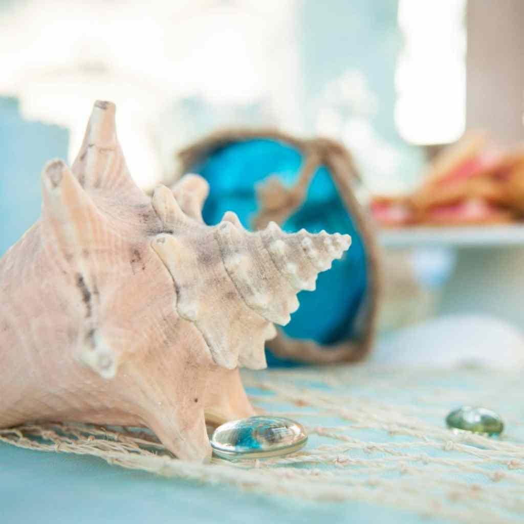 Under the Sea Ocean Party Ideas