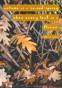 Favorite Fall Quotes