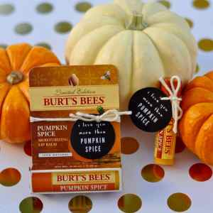Pumpkin Spice Printable