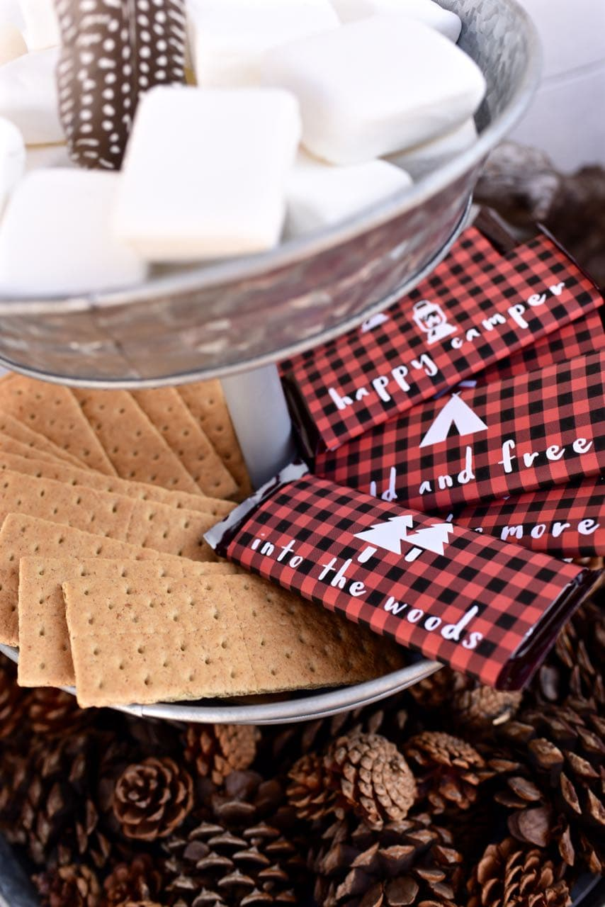 S'mores at a backyard camping party with free camping printables
