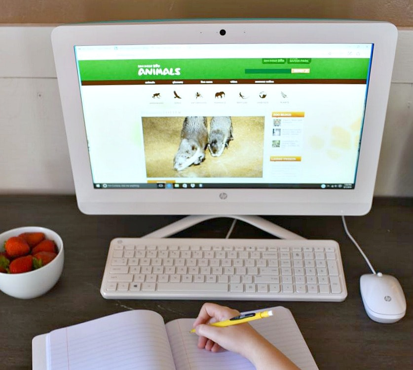 How to set up a homework area for kids