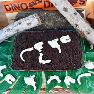 """Dinosaur Dig Cake with Easy Chocolate Fossils + Cookie """"Dirt"""""""