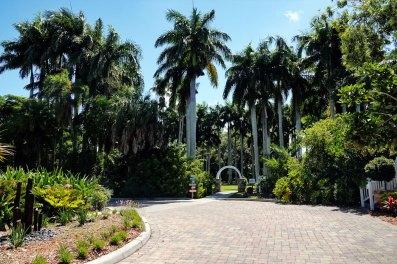 Palma Sola Botanical Park.