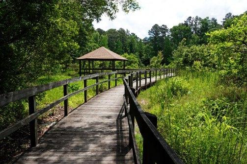 Boardwalk at Newman Wetlands Center.