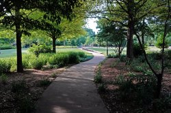 Cabbagetown Park.