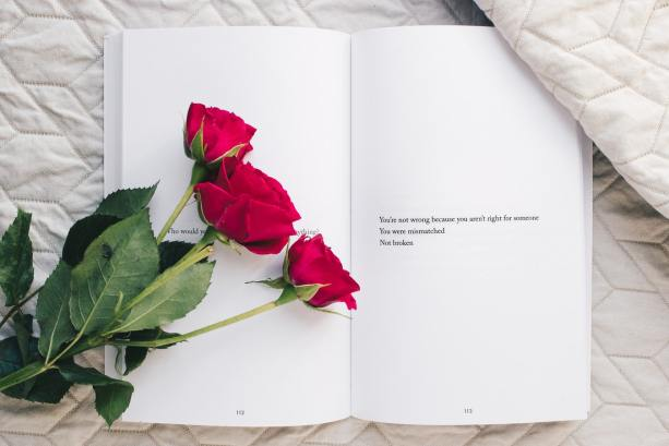 rose on abook