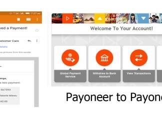 Payoneer to Payoneer