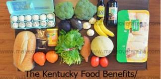 The Kentucky Food Benefits/ EBT Program (SNAP)