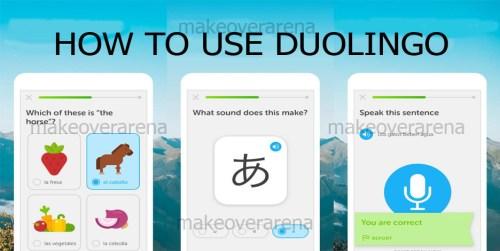 How To Use Duolingo