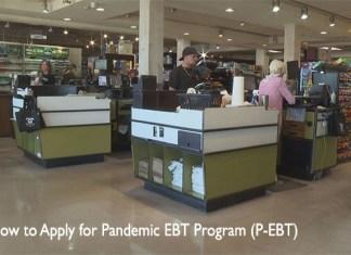 How to Apply for Pandemic EBT Program (P-EBT)
