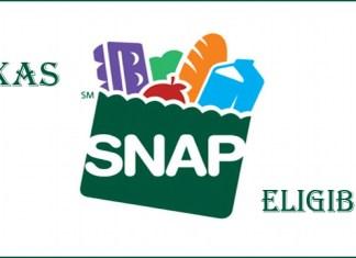 Texas SNAP Eligibility
