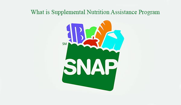 What is Supplemental Nutrition Assistance Program