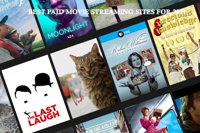 Best Paid Movie Streaming Sites for 2021