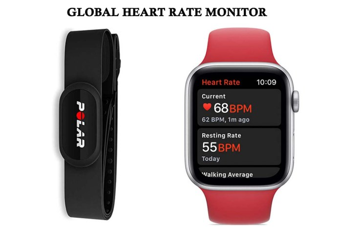 Global Heart Rate Monitor