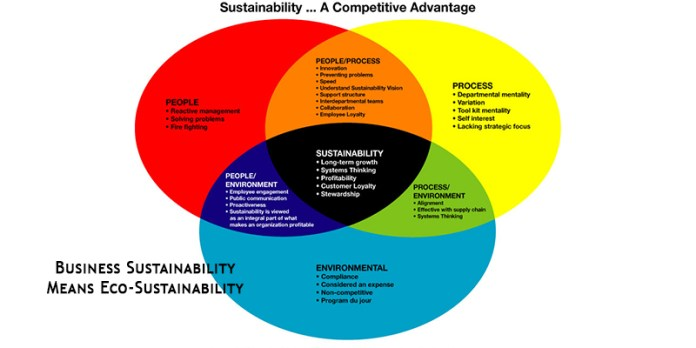 Business Sustainability Means Eco-Sustainability