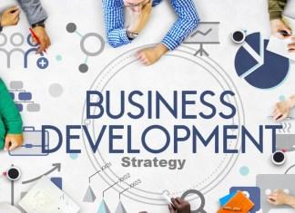 Business Development Strategy: A High-Growth Approach