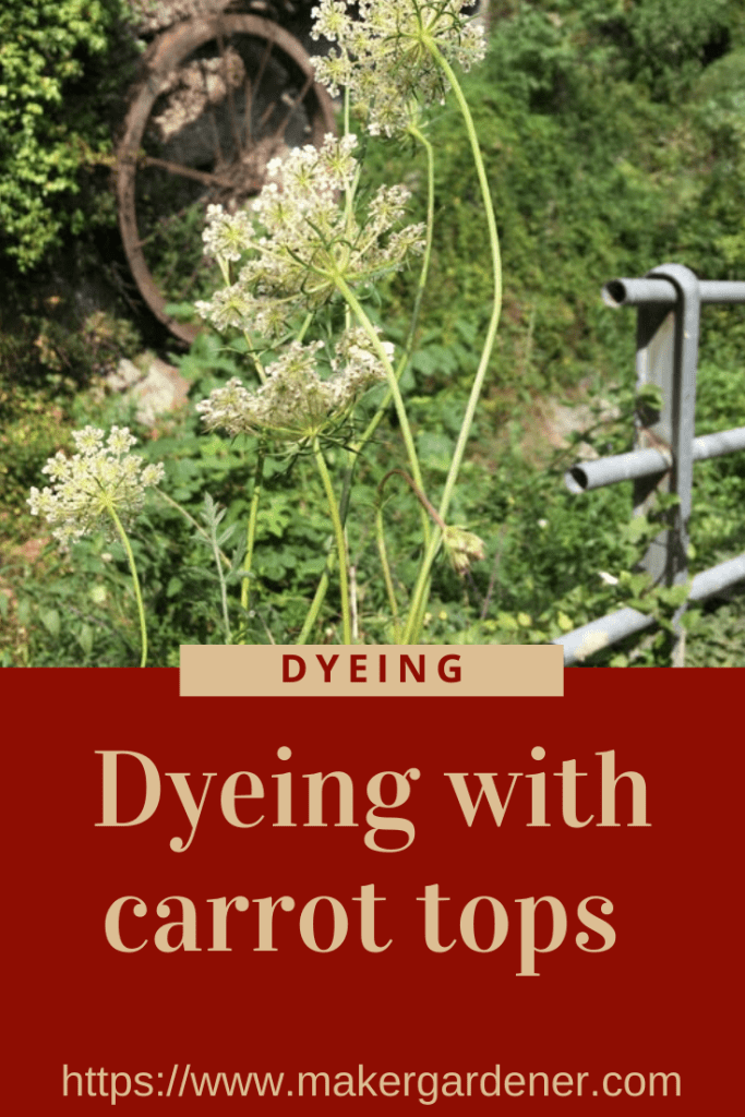dyeing with carrot tops