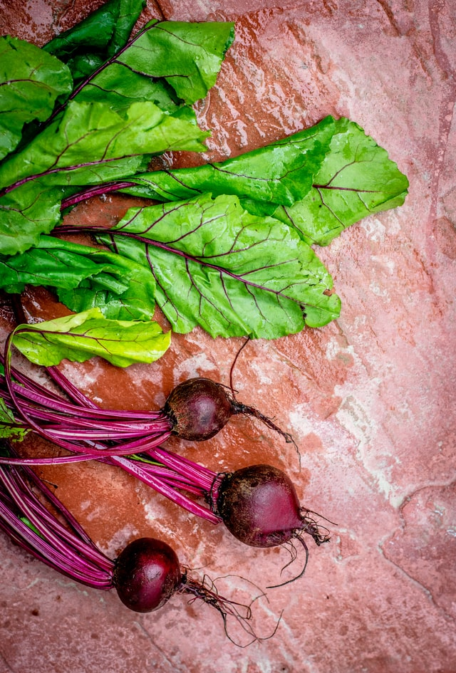 Growing and harvesting beetroot