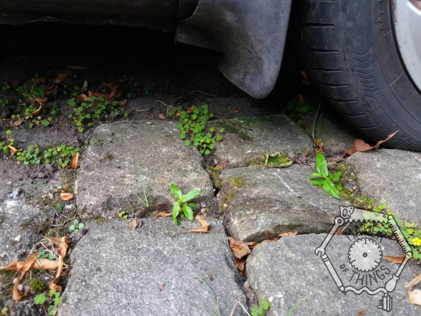 The edge of a car tyre on some cobbles. There is loose soil and weeds growing in the gaps between the stones.