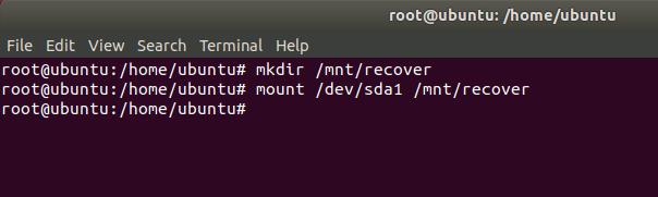 ubuntu-livecd-mount-partition