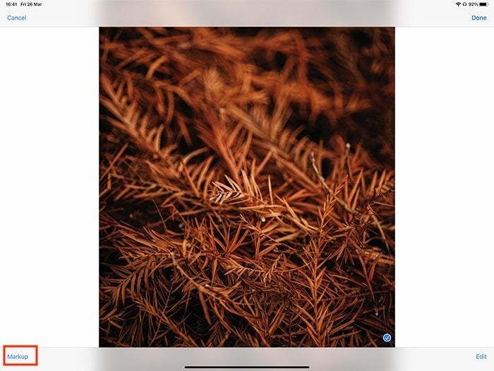 Markup Ipad Annotating Photo