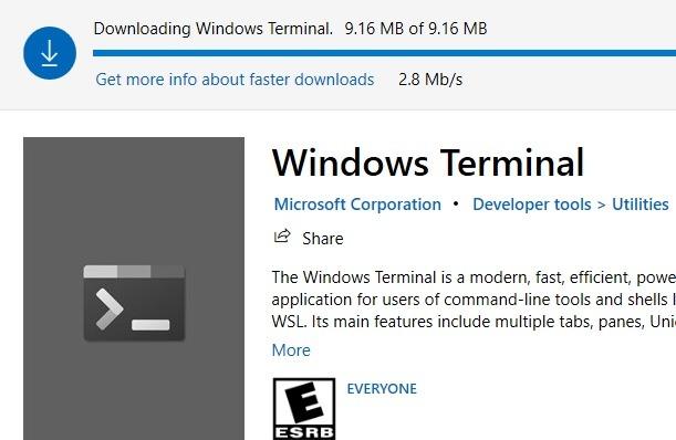 Herunterladen von Windows-Terminals