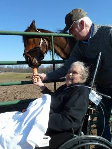 Patty Feeding A Carrot to a Horse