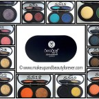 All SeaSoul Makeup HD Eyeshadow Palette shades review swatches price buy online
