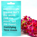 Anatomicals Grease Isn't the Word Mattifying Face Mask Review, Swatches