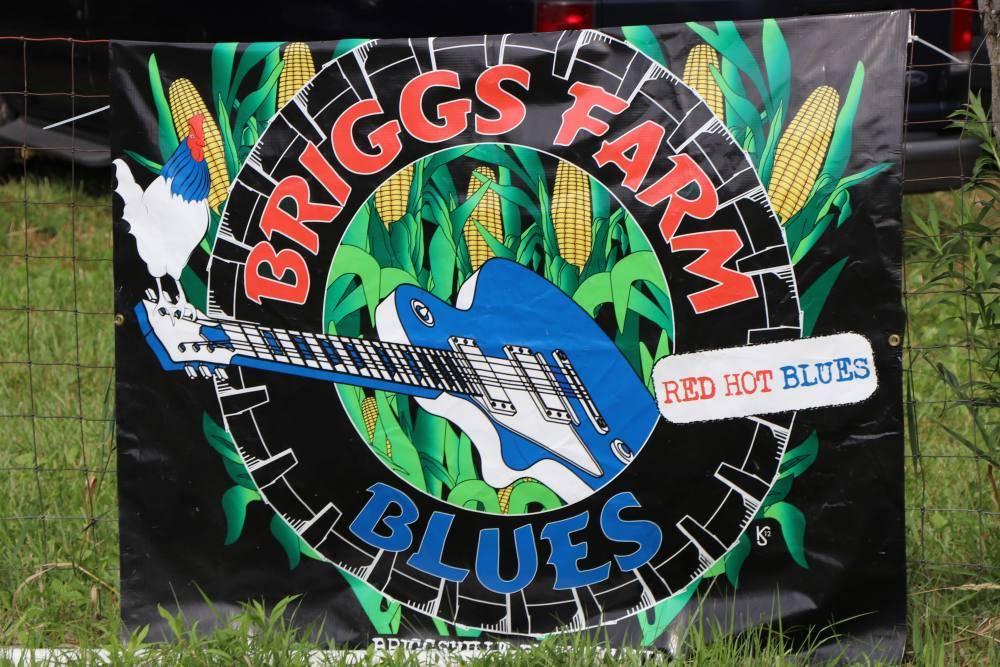 Briggs Farm Blues Festival - July's Best Music Scene