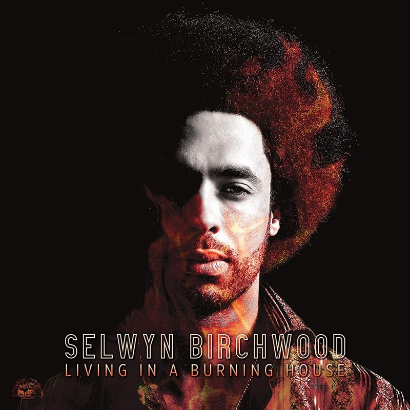 Selwyn Birchwood  Living In A Burning House