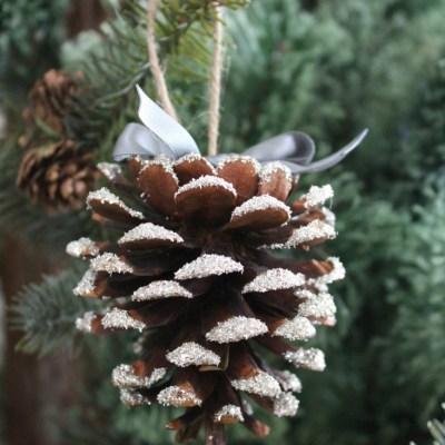 Glass Glitter Pine Cones