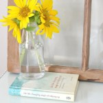 The Life-Changing Magic of Tidying Up: A Journey to Sparking Joy
