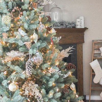 12 Gorgeous Christmas Trees sure to Inspire
