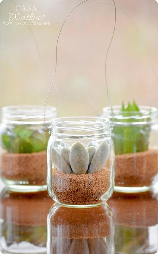 Mini Succulent Hanging Planters
