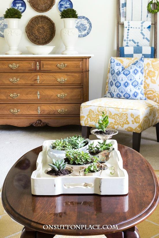 Coffee Table Succulent Garden