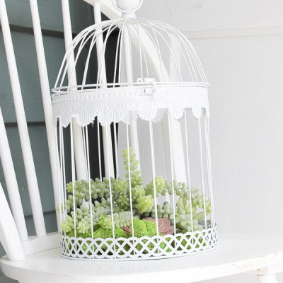 How to Create a Simple Faux Succulent Bird Cage Planter