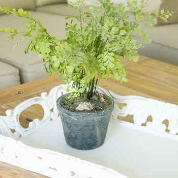 How to Style a Coffee Table   www.makingitinthemountains.com