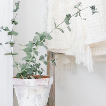 Eucalyptus, farmhouse pot, knitted blanket, blanket ladder