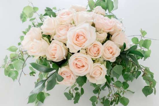 pink roses, green leaves, farmhouse flowers