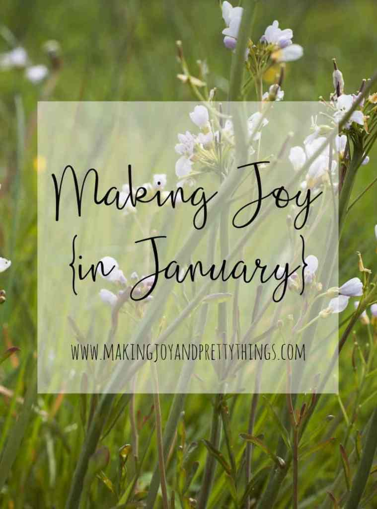 Making joy in January. Living a joyful life in this stage of motherhood. Advice and support for other moms.