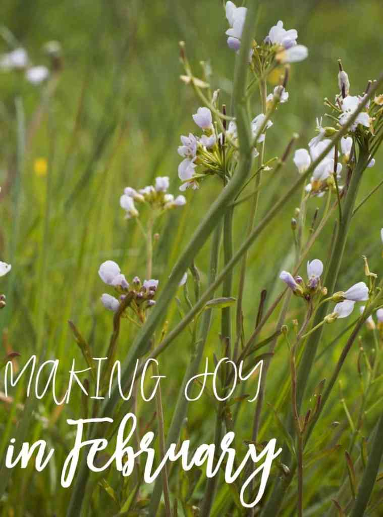 making joy in february | joyful living | motherhood | family