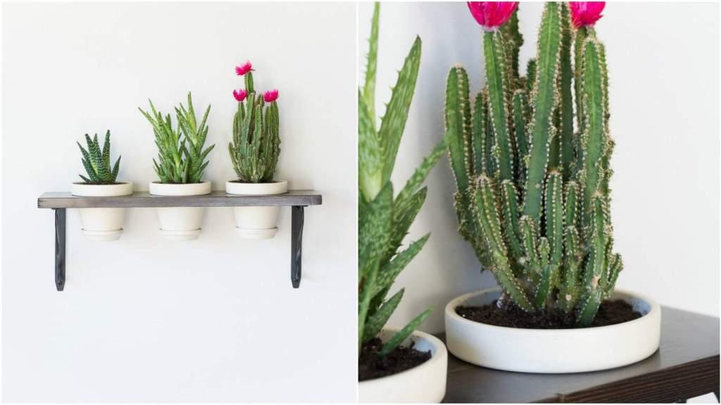 diy planters | diy planter ideas | diy plant pots | planter ideas | planters DIY | farmhouse plant pots | farmhouse planters