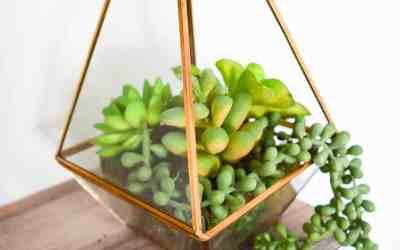 5 Minute Faux Succulent Terrarium