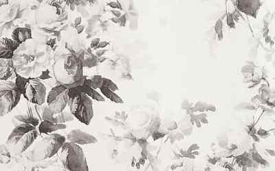 Best Online Sources for Modern Wallpaper
