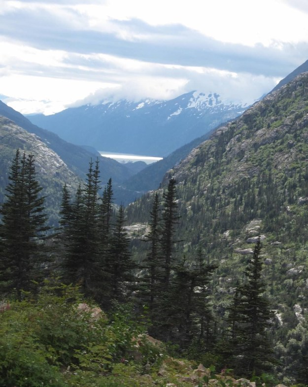 This is the view from the top of a mountain near Skagway, Alaska.