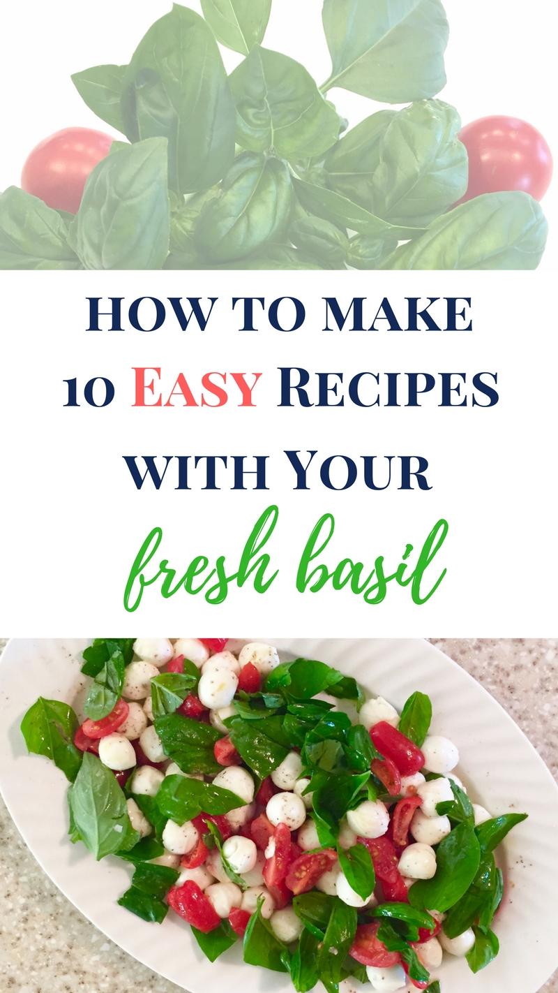 easy fresh basil recipes