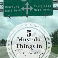 When you plan a trip to the Florida Keys, here are 5 things that you ABSOLUTELY must do!